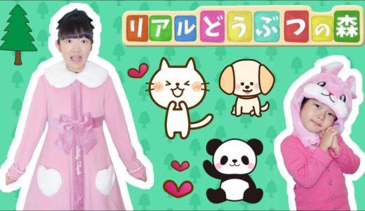 ★リアルどうぶつの森「住人のおねがいを叶えよう!」★Real Animal Crossing★