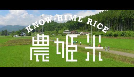 農姫米プロジェクト 草刈り編