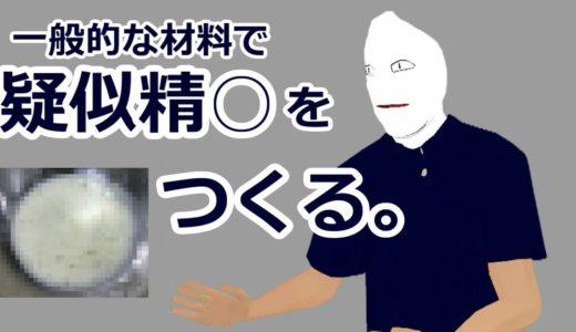 #35 疑似精○の話