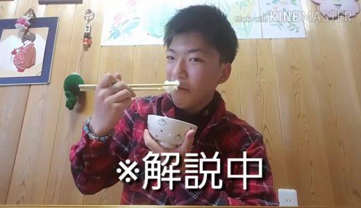 【検証】AVオカズにご飯は食べれるのか検証してみた!