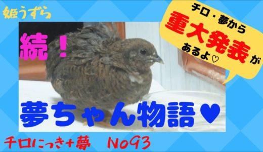チロにっき+夢 No93 続!夢ちゃん物語♥ チロ・夢から重大発表【いやしCHさん】画像提供!