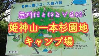 [岩手]姫神山一本杉園地キャンプ場