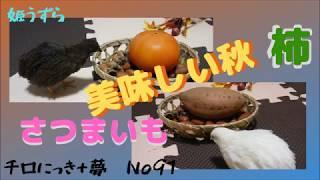 チロにっき+夢 No91 美味しい秋