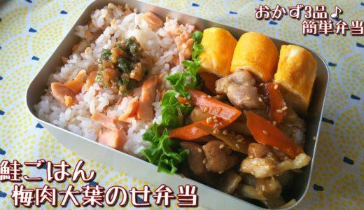 【料理動画】鮭ごはん☆梅肉大葉のせ弁当🍱【お弁当作り】obento#32