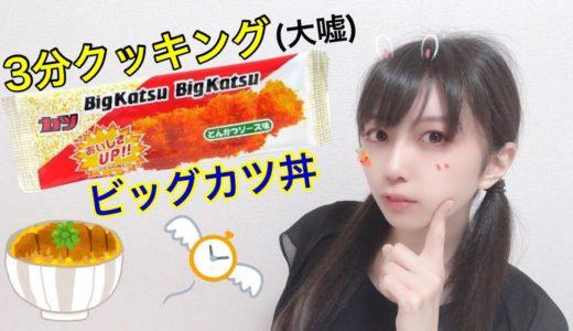 【実写】駄菓子のビッグカツでカツ丼【3分クッキング(大嘘)】