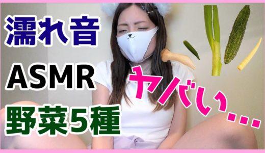 【濡れ音ASMR】挿入したらHな音がする野菜選手権やってみたら過激すぎました。
