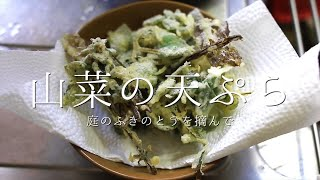 ふきのとうと雑草(山菜)の天ぷらを食す#002 Picking wild plants in the garden and coooking  tempura|FarmRoots'Visions|