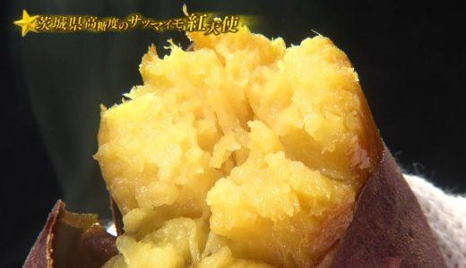 満天☆青空レストラン 10/24 放送予告「茨城県 紅天使」