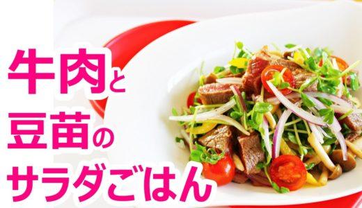 【簡単料理】牛肉と豆苗のサラダごはんの作り方レシピ|姫ごはん